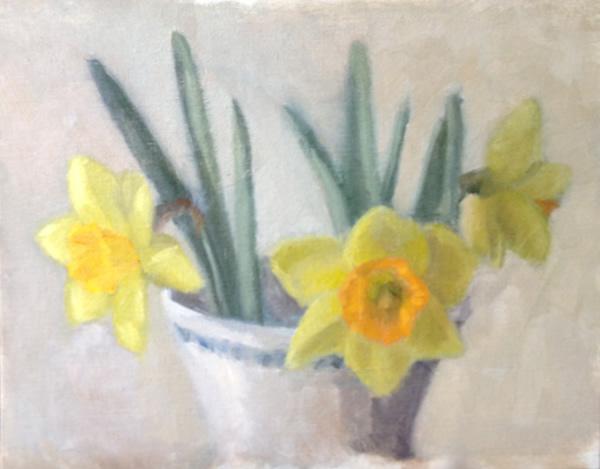 2013_daffodils